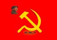Resolución del Buró Político del Comité Central del Partido Comunis-ta (Marxista-Leninista) de Panamá