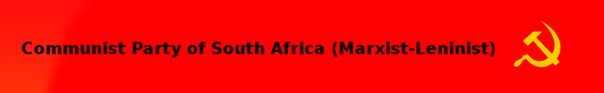 Die landesweiten Bildungsproteste an den südafrikanischen Universitäten im Oktober 2015
